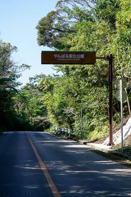 やんばる国立公園道路標識