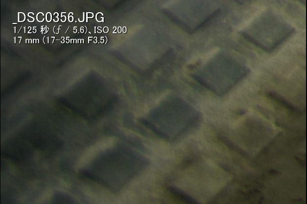 α99IIで使うミノルタ大三元レンズ(17-35mmF3.5G編)F5.6(17mm 周辺部)