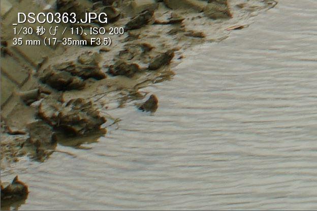 α99IIで使うミノルタ大三元レンズ(17-35mmF3.5G編)F11(35mm 周辺部)