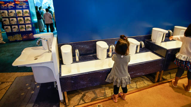 子供と行く!初めての美ら海水族館 タッチの後は濡れた手をよく洗いましょう