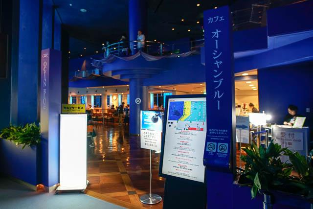 子供と行く!初めての美ら海水族館 カフェ「オーシャンブルー」