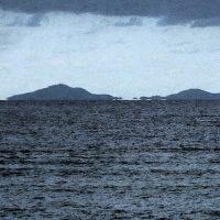 やんばる浮島現象