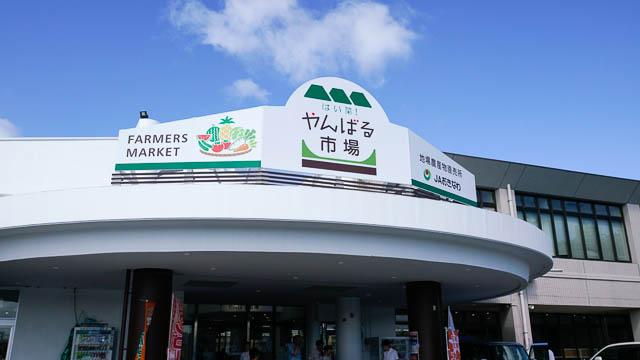 やんばるで農産物買うならJAファーマーズマーケット「はい菜!やんばる市場」