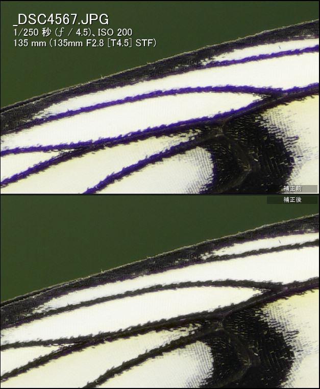 α99IIとSTF135mmレンズで撮る「至上のボケ描写」