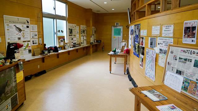 ヤンバルクイナに必ず会える!国頭村の生態展示学習施設
