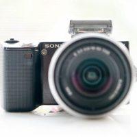 初心者のための一眼デジカメ【その2:カメラ選び編】
