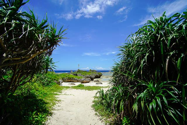 やんばる天然ビーチで遊ぶ(その2)!今帰仁村の与那嶺ビーチとサンゴ礁の海
