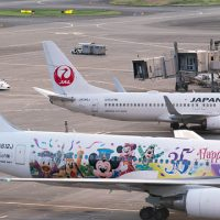 【35周年ディズニー】JALセレブレーションエクスプレスに乗りたい!運航状況まとめてみた