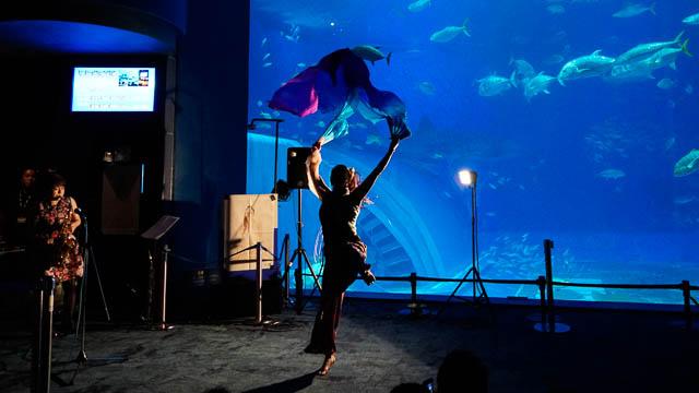 沖縄美ら海水族館×安室奈美恵!引退の夜に安室さん名曲のサックス演奏会が開催(動画あり)
