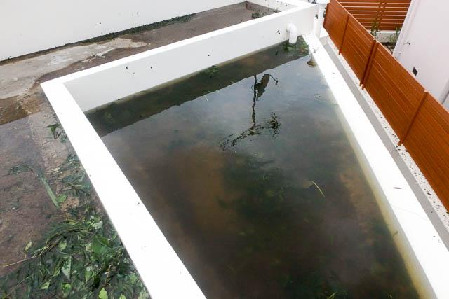 台風後の屋根に上ってみた-大惨事になる前に点検すべきこととは?