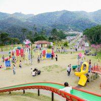 子供と行く!遊具のあるオススメ公園「八重岳桜の森公園」
