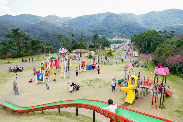 本部町八重岳桜の森公園